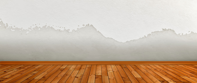 manchas en pared por humedad