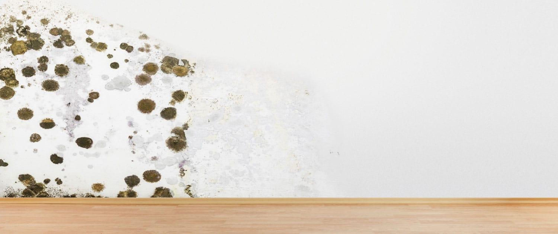Humedad en muros y paredes causas tratamiento y soluci n - Humedad por condensacion en paredes ...