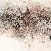 Efectos secundarios de las humedades